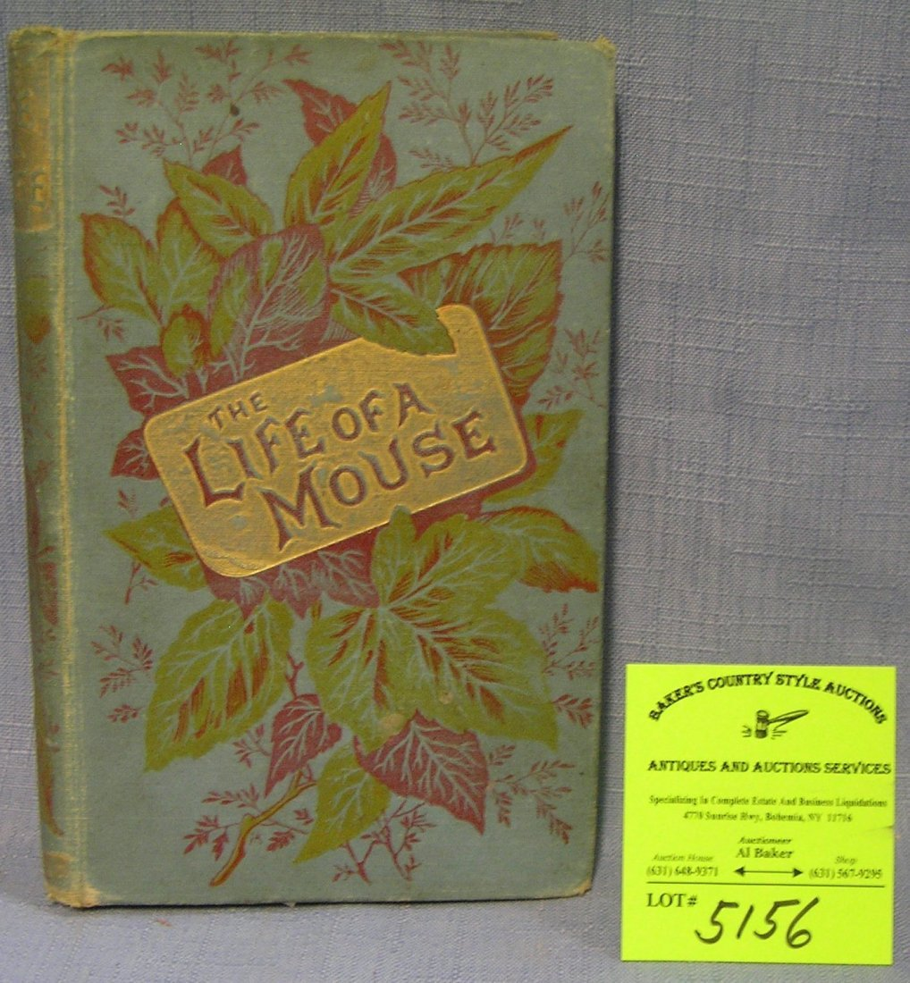 The Life of a Mouse illustrated antique book