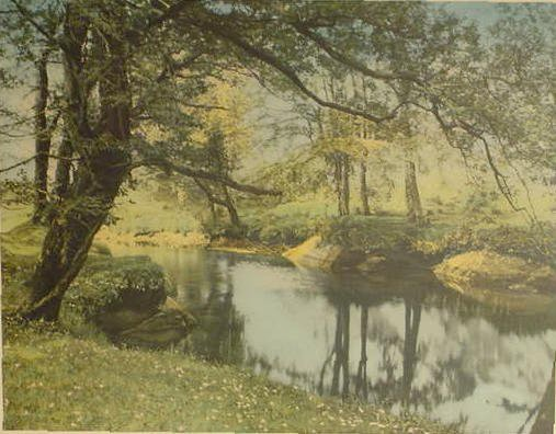 "1842: Wallace Nutting Print ""A Sheltered Brook"" # 8142  - 2"