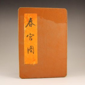 Chinese Qing Dy Watercolour Xuan Paper Painting Book