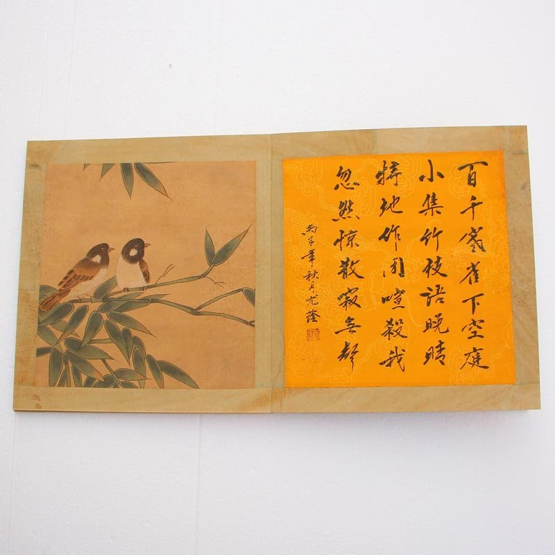 Chinese Watercolour on Xuan Paper Birds Painting Book