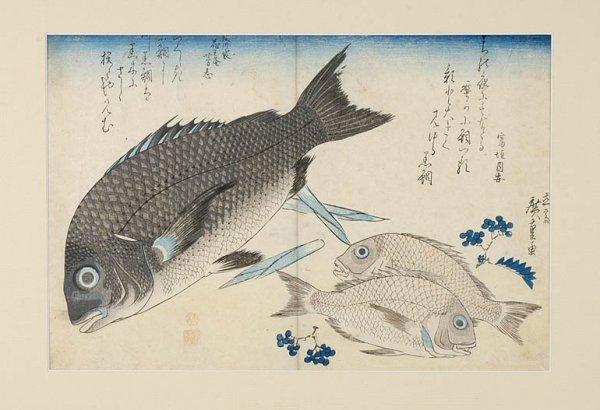 1007: Group of Thirty Japanese Woodblock Prints