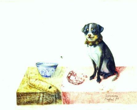1015: Giovanna Garzoni Italian, 1600-1679 PUG ON A TABL