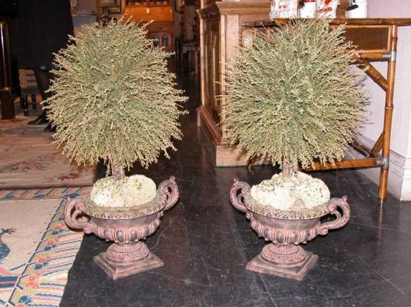 3002: Pair of Neoclassical Style Composition Urns with