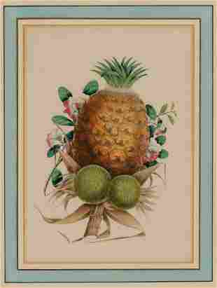 Chinese School circa 1875 Pineapple and Flowers