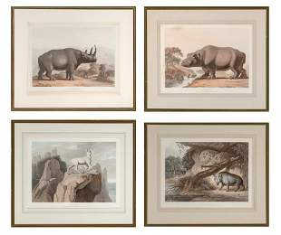 Samuel Daniell THE HIPPOPOTAMUS; THE AFRICAN HOG; THE