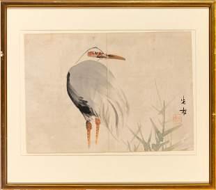 Chinese School Shore Bird
