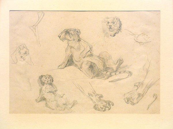 3008: Rosa Bonheur French, 181822-1899 STUDIES OF LIONS