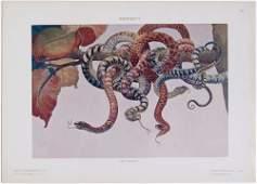 1910s MODELLI D'ARTE DECORATIVA MILANO Print PALCHETTI