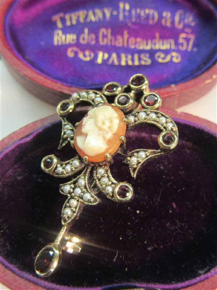 Victorian Cameo Garnet And Seed Pearl Pin