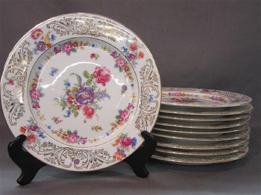 Set of 10 Hand Painted Schlaggenwald Dinner Plates