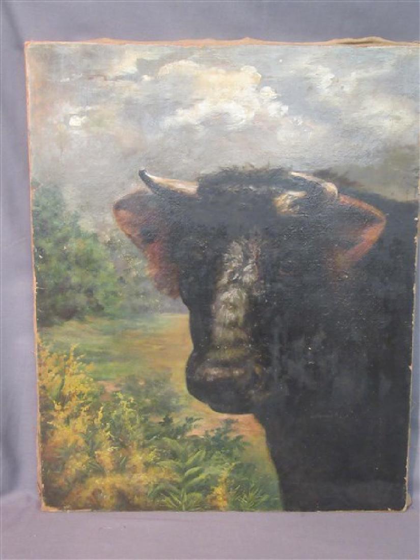 19th c. American Bull Oil Painting