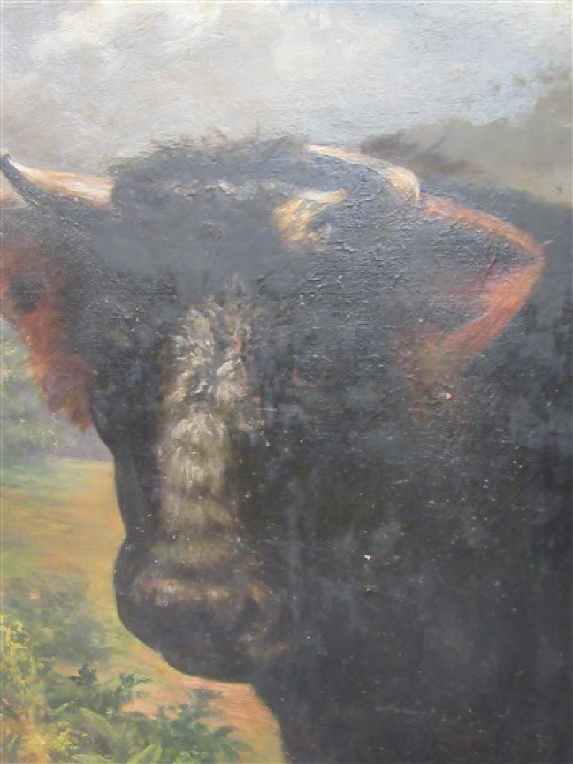 19th c. American Bull Oil Painting - 2