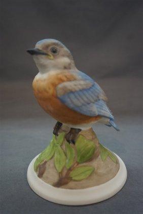 Boehm Baby Blue Bird Porcelain