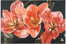 Winifred Godfrey (American, B. 1944) Tulips.