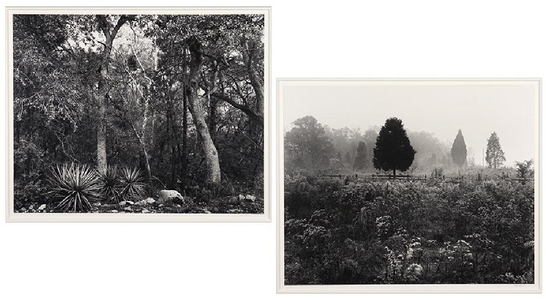 John Ward (American, B. 1943) Landscapes.