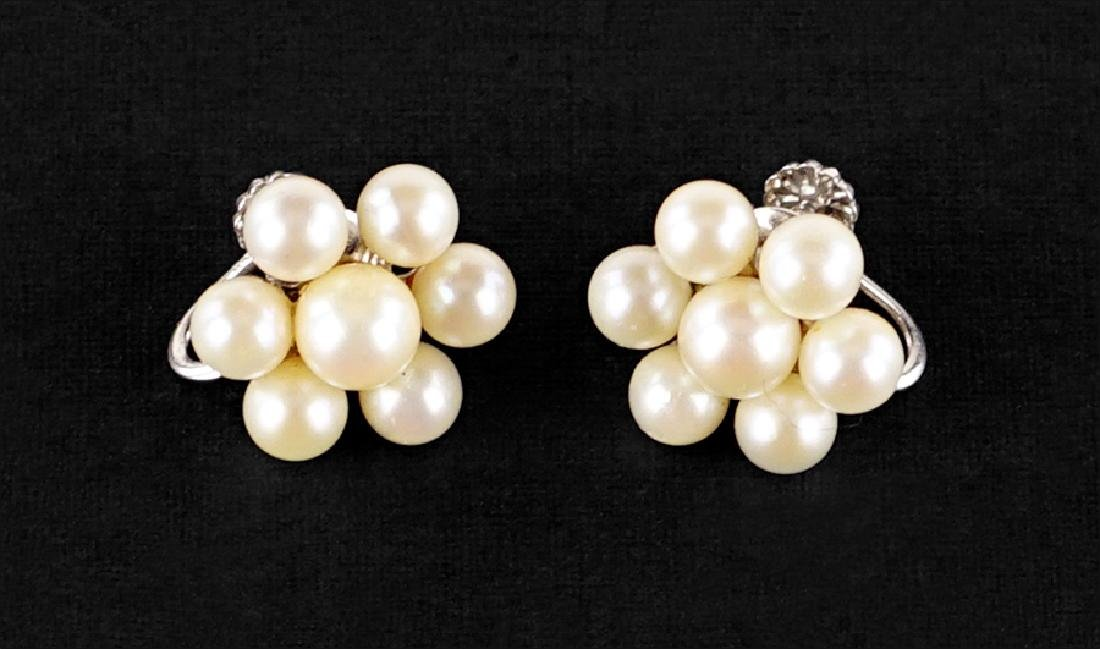 A Pair of Pearl Earrings.
