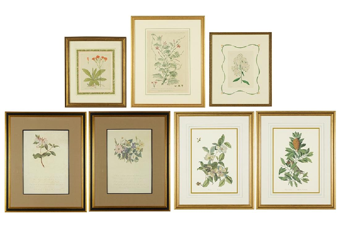 A Collection of 18th & 19th Century Botanicals.