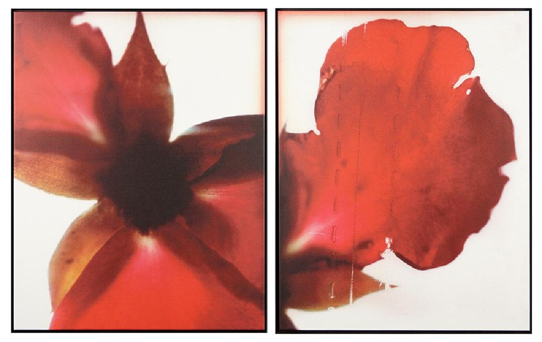Artist Unknown (American, Contemporary) Red Petals.
