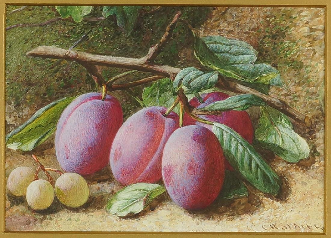 Charles Henry Slater (British, c. 1820-1890) Plums.
