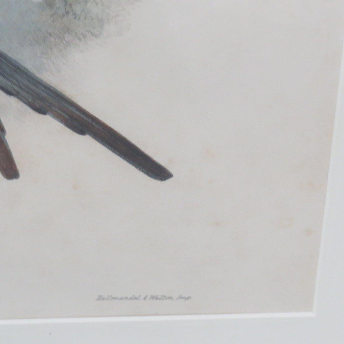 John Gould (British, 1804-1881) Two Hummingbird Prints. - 12