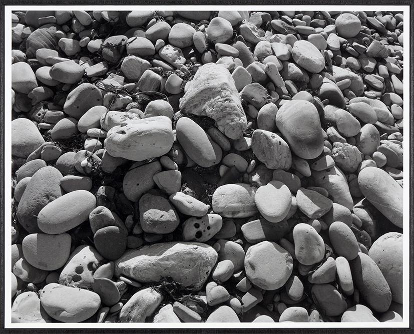 James Welling (American, B. 1951) Ellwood Beach 25,