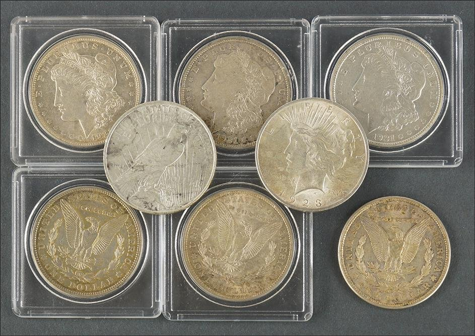 Eight Morgan and Peace Silver Dollars.