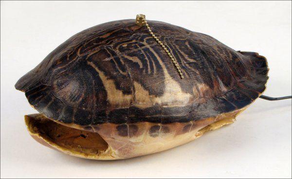 742115: TORTOISE SHELL LAMP.