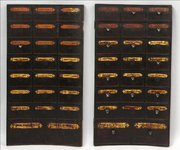 891018: PAIR OF 19TH CENTURY APOTHECARY DOOR PANELS.