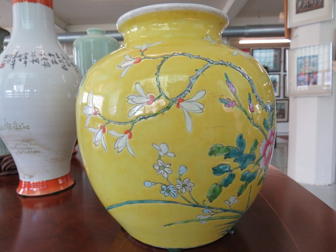 A Collection of Chinese Porcelain Vases. - 3