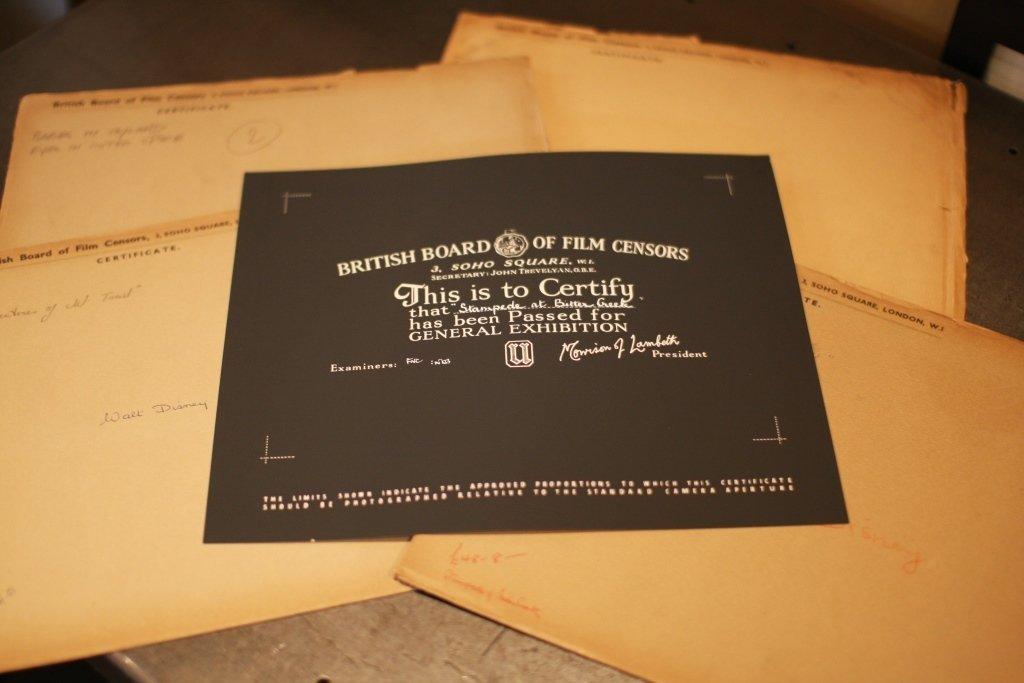 Disney Miscellaneous 3. 23 x BBFC Certificates