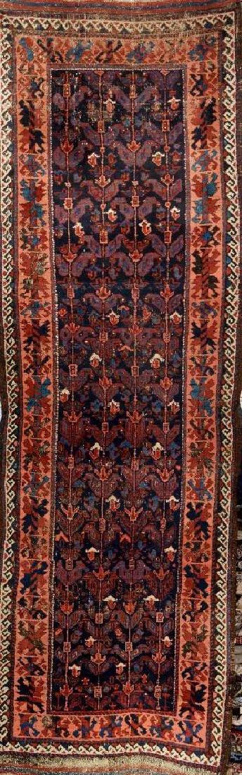 Rare Baluch 'Long Rug',