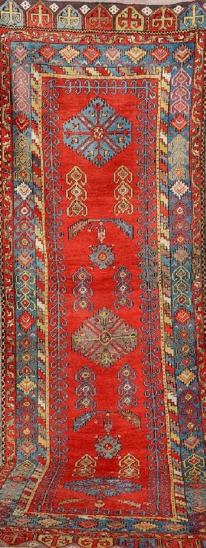 Anatolian 'Runner',
