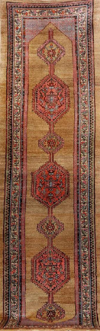 Northwest Persian (Part Camel-Wool) 'Runner',