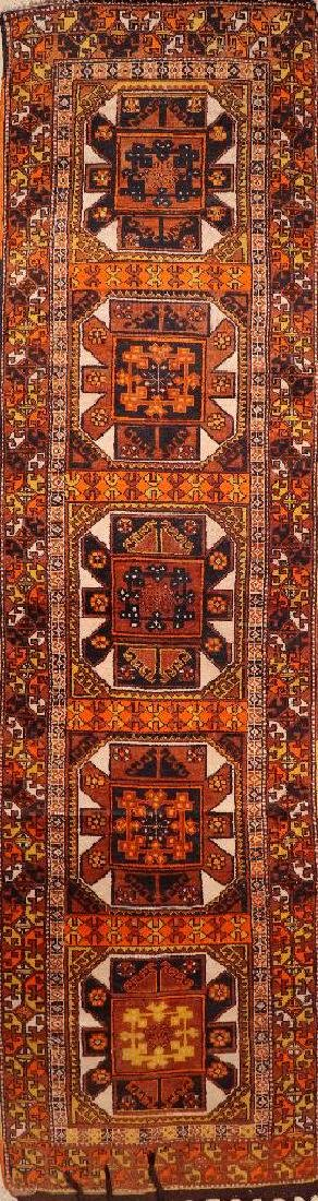 Anatolian Kurt 'Runner',