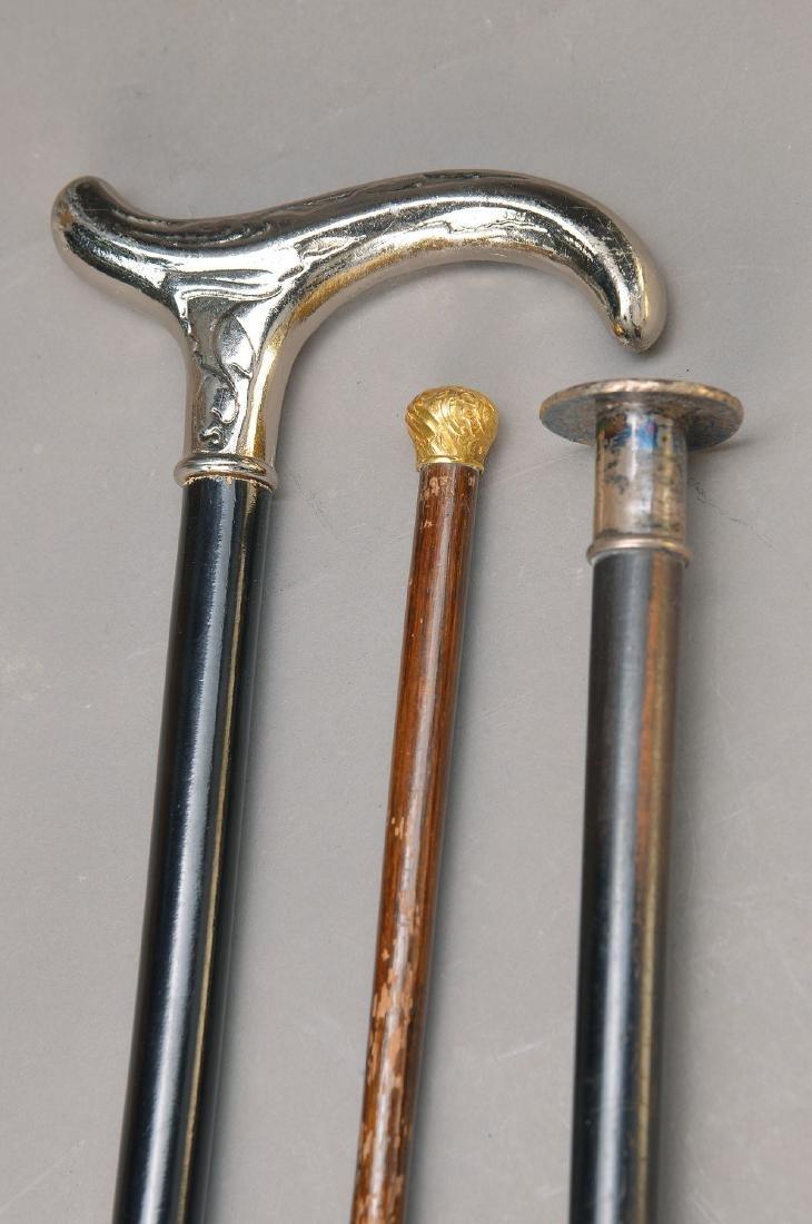 3 canes: 1 around 1900