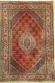 Bidjar old, Persia, approx. 60 years, wool on cotton