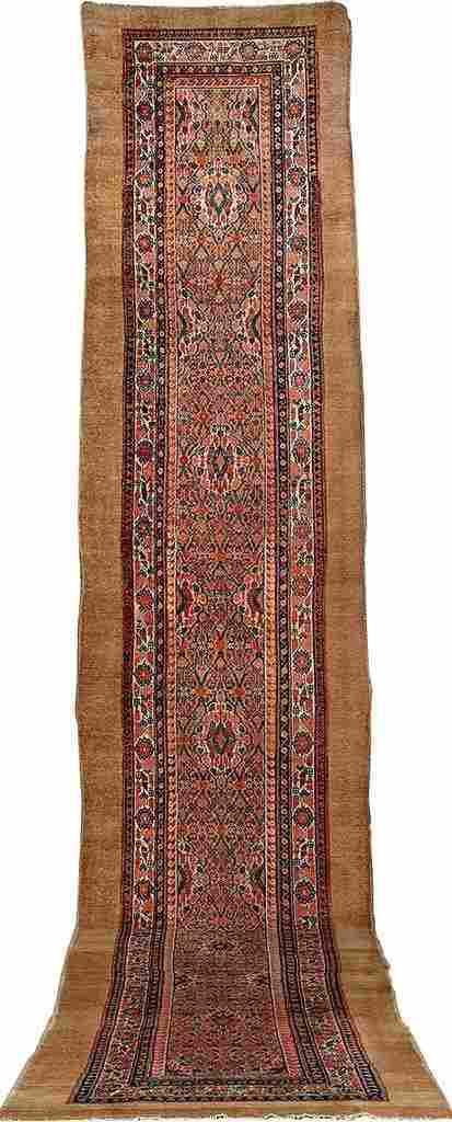 'Camel-Wool' Hamadan 'Runner',