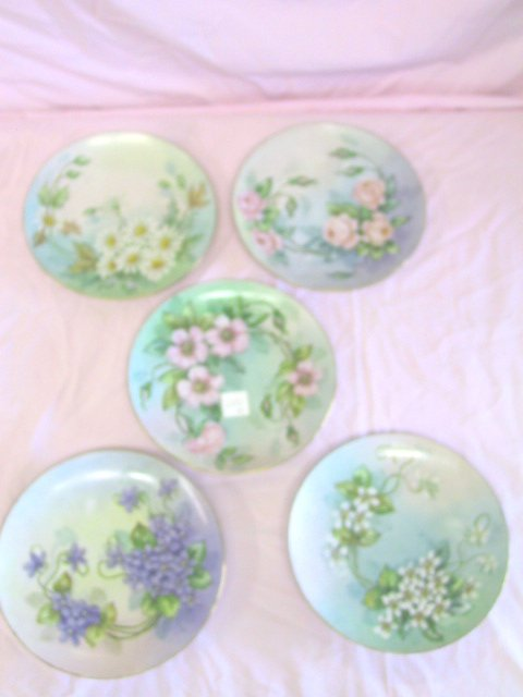 17: 5 Hand Painted Floral Plates