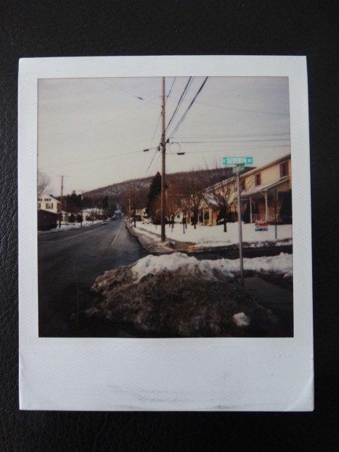 Andy Warhol Polaroid