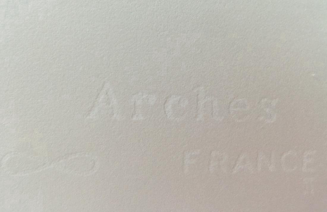 Andy Warhol Lithograph. Arches France Dry stamp - 3