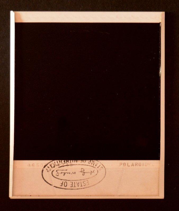 Andy Warhol, Original Polaroid - 3