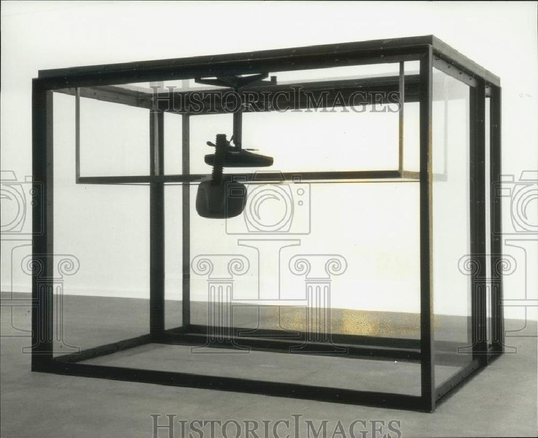 Damien Hirst , 1996 Press Photo exhibit at Contemporary