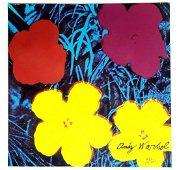 Andy Warhol POPPY FLOWERS. 60x60 CM