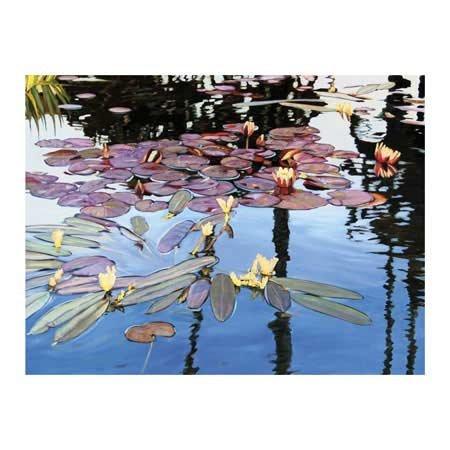 Tom Swimm-Floating Colors 2