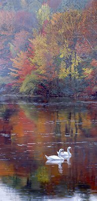 TERRY ISAAC…AUTUMN REFLECTIONS PAPER SIGNED AND