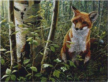 JOHN SEEREY-LESTER…THE YOUNG EXPLORER-RED FOX KIT PAPER