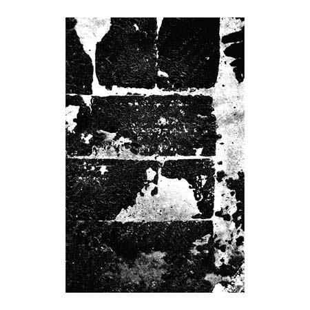LUANN OSTERGAARD - MAXIM III