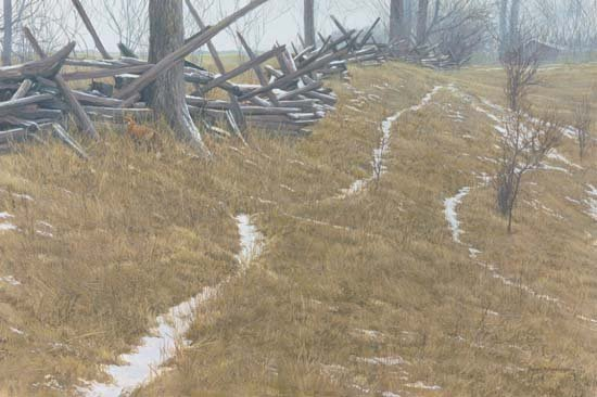 ROBERT BATEMAN…PASTURE TRAILS-RED FOX PAPER SIGNED AND