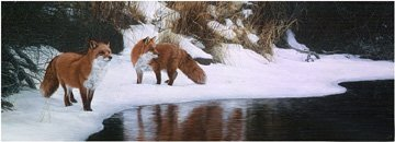 TERRY ISAAC…SHORE PATROL-RED FOX PAPER SIGNED AND