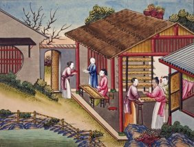 Chinese School - Silk Cocoons